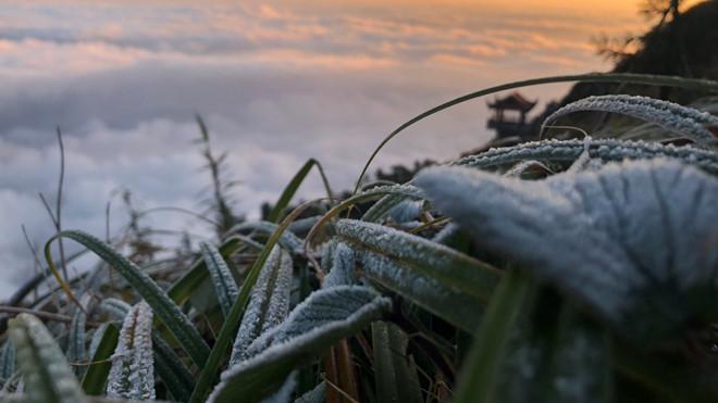 Tin tức dự báo thời tiết mới nhất hôm nay 6/12/2019: Miền Bắc trời rét, vùng núi có băng giá - Ảnh 1