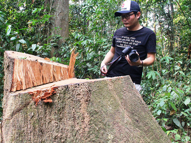 Khởi tố vụ 2 cha con phá 11.300 m2 rừng tự nhiên - Ảnh 2