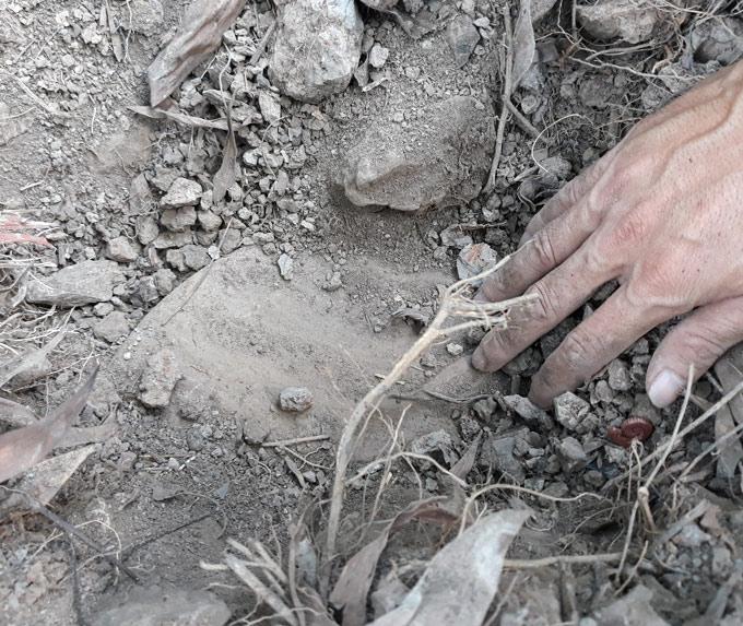 Vụ hơn 300 xác thai nhi bị bỏ theo rác thải ở Cà Mau: Lời kể xót xa của người liệm thi hài - Ảnh 1