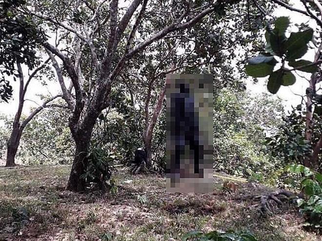 Tá hỏa phát hiện xác người đàn ông phân hủy nặng trong tư thế treo cổ ở vườn điều - Ảnh 1