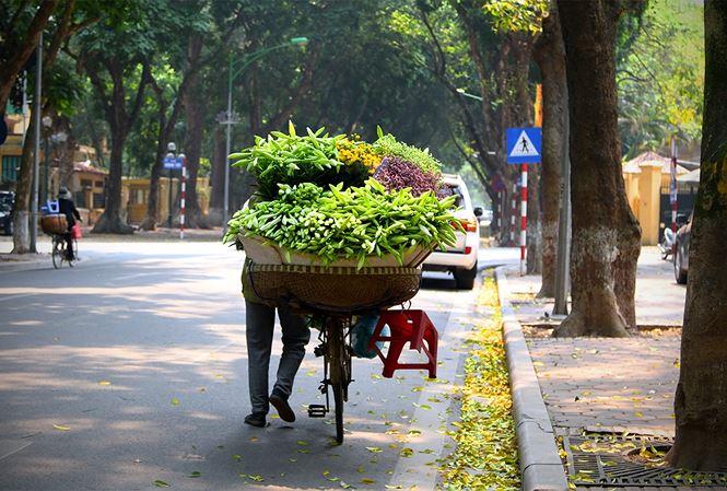 Dự báo thời tiết ngày 8/4: Hà Nội ban ngày nắng đẹp, chiều tối có mưa dông - Ảnh 1