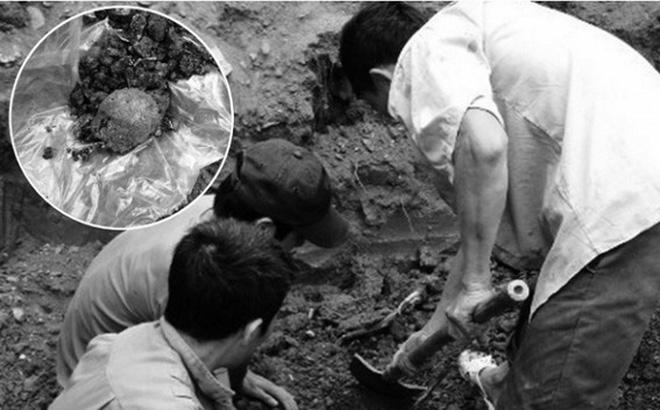 Người dân phát hiện nhiều mẩu xương nghi hài cốt người ở vuông tôm - Ảnh 1