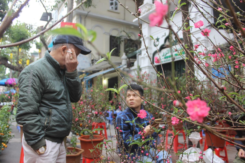 Người dân nô nức ghé thăm phiên chợ hoa Tết lâu đời nhất Hà Nội trong ngày rét ngọt  - Ảnh 4