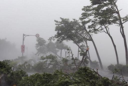 Dự báo thời tiết ngày 15/11: Miền Bắc đón không khí lạnh, bão số 13 quần thảo Hà Tĩnh- Quảng Ngãi - Ảnh 1