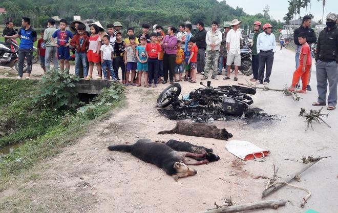 Nghi can trộm chó bị người dân đánh chết, đốt xe máy - Ảnh 1