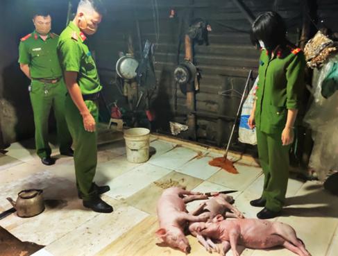 Lời khai của người đàn ông mua 3 con lợn chết về quay bán cho khách - Ảnh 1