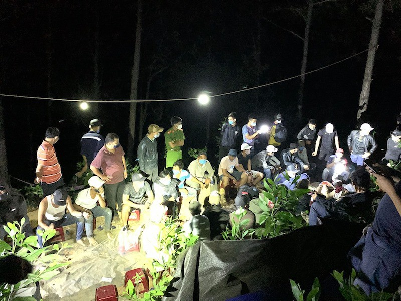Đột kích sới bạc trong rừng, bắt giữ 41 người - Ảnh 1