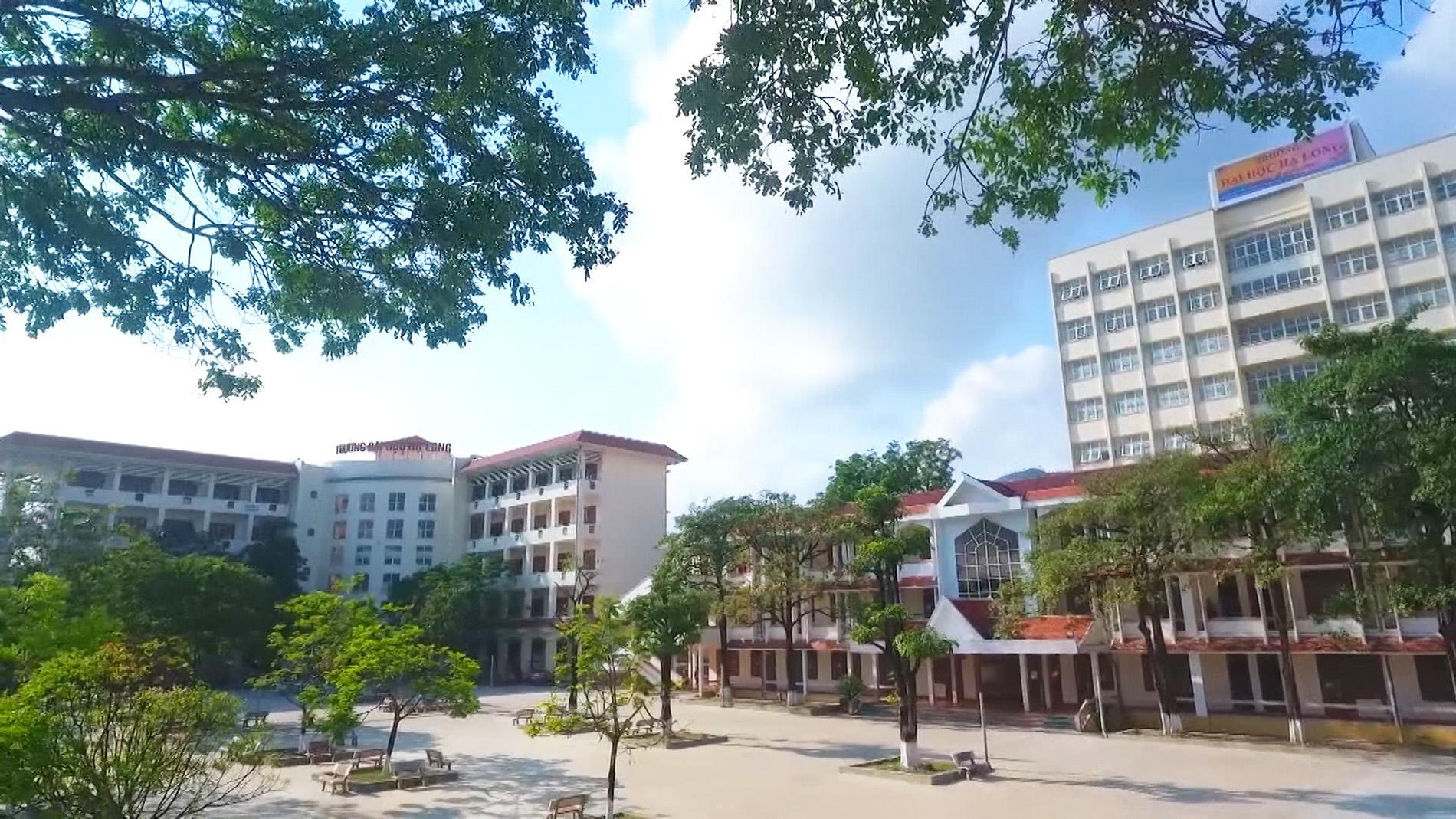 Chủ tịch UBND tỉnh Quảng Ninh kiêm hiệu trưởng trường ĐH: Phù hợp với các quy định pháp luật - Ảnh 1