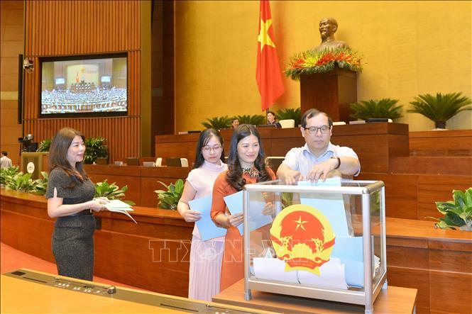 Thông qua Nghị quyết phê chuẩn danh sách Phó Chủ tịch và Ủy viên Hội đồng Bầu cử quốc gia - Ảnh 5