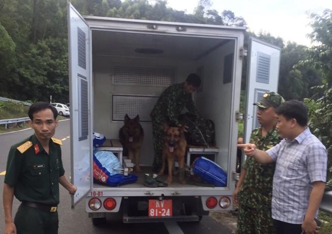 Chùm ảnh: Hàng trăm chiến sĩ công an, chó nghiệp vụ vây bắt phạm nhân vượt ngục trên núi Hải Vân - Ảnh 3