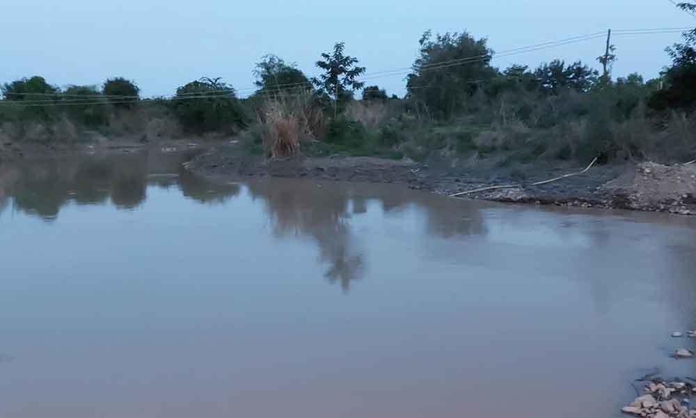 Tìm thấy thi thể 3 học sinh tiểu học đuối nước ở Bình Thuận - Ảnh 1