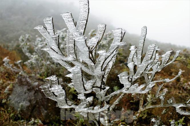 Dự báo thời tiết mới nhất hôm nay 11/1: Miền Bắc đón không khí lạnh tăng cường - Ảnh 1