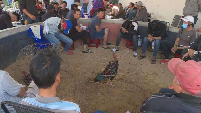 """Phá trường gà, bắt 47 """"con bạc"""" ở Đắk Lắk: Hé lộ thủ đoạn của """"ông trùm"""" 39 tuổi - Ảnh 1"""