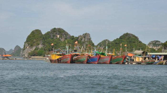Vụ thi thể 2 vợ chồng ngư dân trôi dạt trên vịnh Bái Tử Long: Nạn nhân mới đi làm được một ngày - Ảnh 1