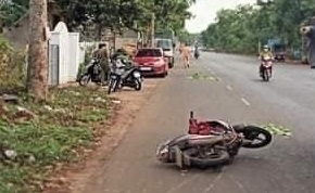 Lái xe máy tông vào gốc cây, 2 thiếu niên tử vong tại chỗ - Ảnh 1