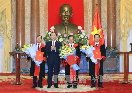 Chủ tịch nước trao quyết định bổ nhiệm Phó Chánh án, Thẩm phán TANDTC - Ảnh 1