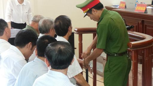 Sai phạm đất đai ở Đồng Tâm: 14 cựu cán bộ hầu tòa - Ảnh 5