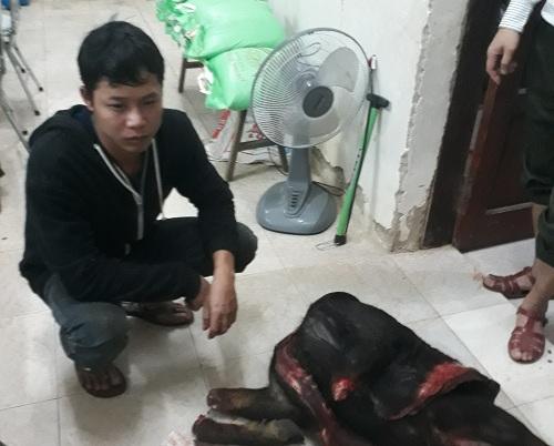 Khởi tố vụ bắt, xẻ thịt sơn dương ở Vườn Quốc gia Phong Nha-Kẻ Bàng - Ảnh 1