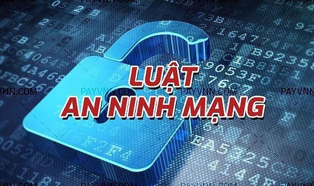 Bộ Công an công bố dự thảo Nghị định về Luật An ninh mạng - Ảnh 2