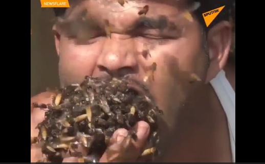 Video: Rùng mình khoảnh khắc người đàn ông nhét hàng trăm con ong vào miệng - Ảnh 1