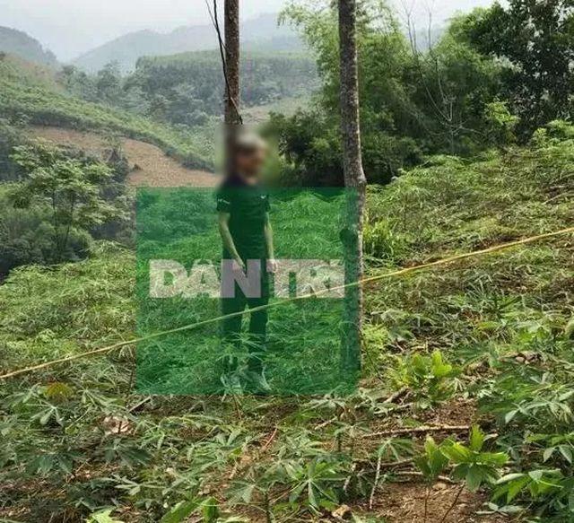 Vụ sát hại 2 anh em ở Yên Bái: Nghi phạm tử vong trong tư thế treo cổ trên đồi - Ảnh 1