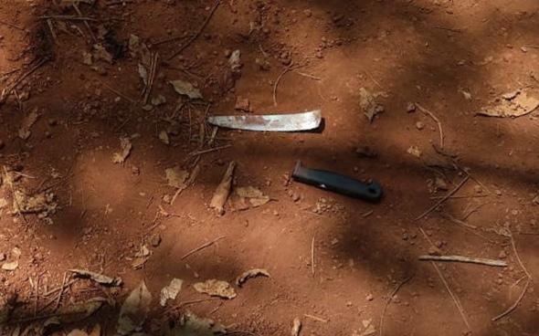 Ráo riết truy bắt nghi can chặn đường, đâm gục vợ cũ trong lô cao su - Ảnh 1