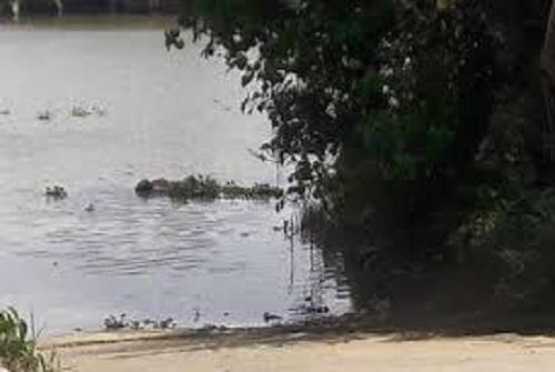 Truy tìm thân nhân thi thể trôi sông, tay trái có hình xăm nàng tiên cá - Ảnh 1