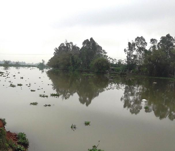 Vụ thi thể người mắc lưới ngư dân ở Nghệ An: Bất ngờ kết quả khám nghiệm tử thi - Ảnh 1