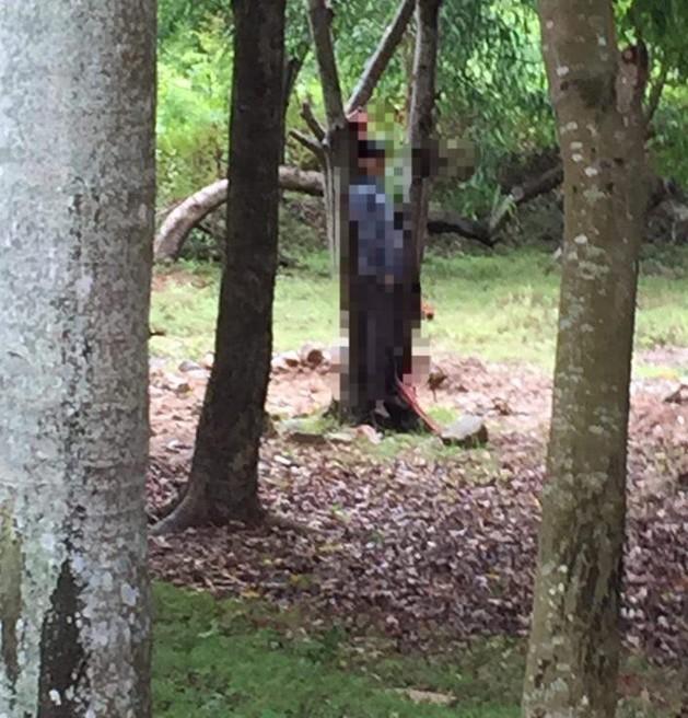 Tá hỏa phát hiện thi thể người đàn ông treo cổ tại vườn cây sau khách sạn - Ảnh 1