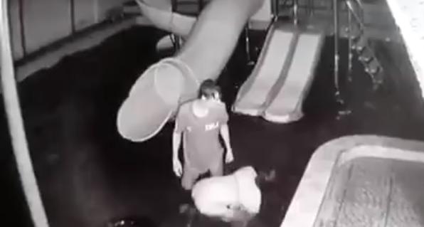 Xác minh clip chồng đánh đập vợ từ dưới hồ nước lên tận bờ trước mặt con nhỏ ở Tây Ninh - Ảnh 1