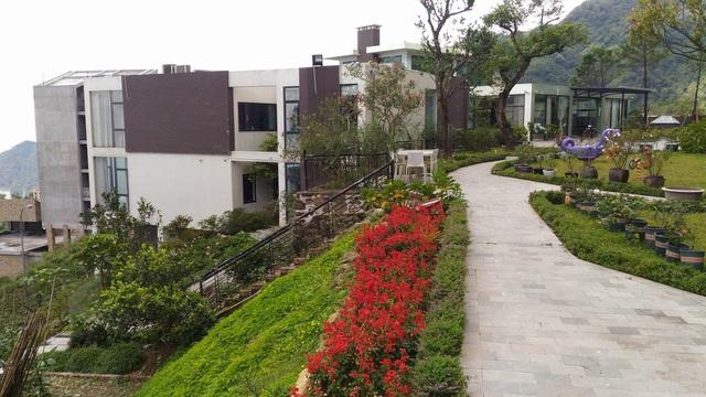 Trịnh Xuân Thanh dùng 25 tỷ tiền dự án mua lô đất 3.400 m2 tại Tam Đảo - Ảnh 1
