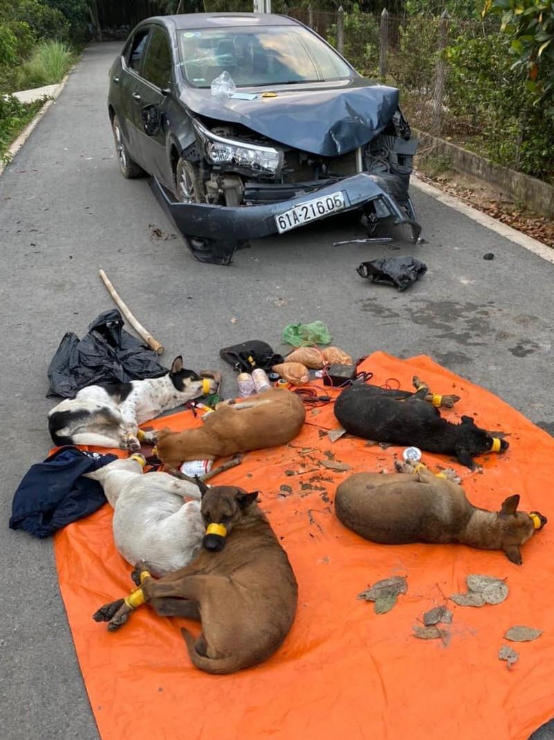 """Bị truy đuổi, """"cẩu tặc"""" tông thẳng ô tô vào công an chạy trốn: Bỏ lại 7 con chó bị quấn băng keo - Ảnh 1"""