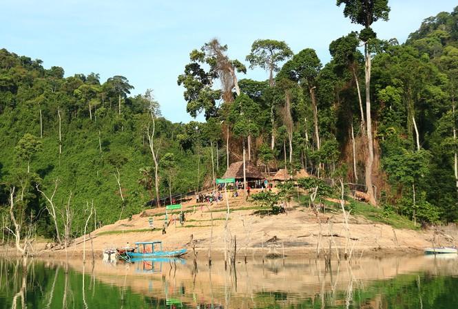 Vì sao Chủ tịch Quảng Nam yêu cầu đánh sập các hầm vàng ở Vườn quốc gia Sông Thanh? - Ảnh 1
