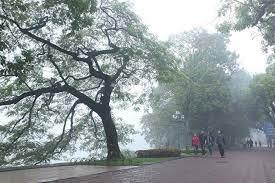Tin tức dự báo thời tiết mới nhất hôm nay 13/3/2021: Hà Nội có mưa nhỏ, thấp nhất 21 độ - Ảnh 1