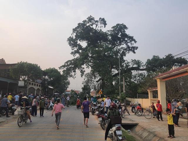 Tin tai nạn giao thông ngày 2/4/2021: Cành cây đa 300 tuổi rơi xuống, người dân nháo nhào chạy - Ảnh 1