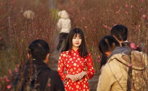 """Cận cảnh nhan sắc """"hot girl vườn đào"""" trong bộ ảnh của Reuters - Ảnh 1"""