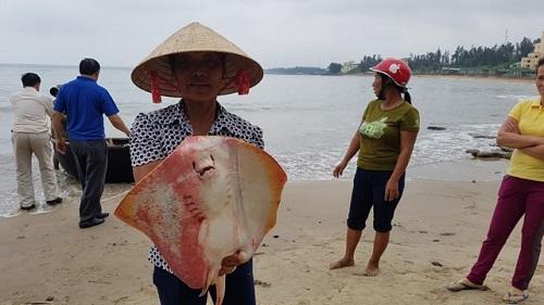 Ô nhiễm biển miền Trung không có trong 10 sự kiện tài nguyên và môi trường 2016 - Ảnh 1