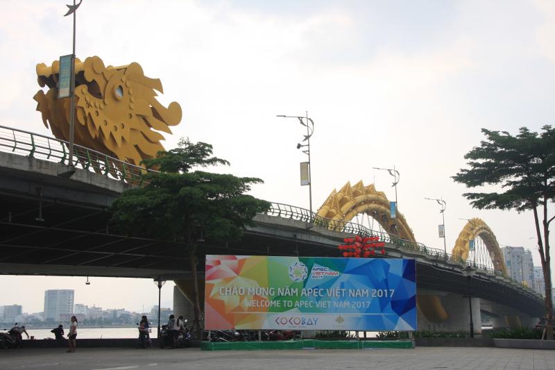 Đà Nẵng rực rỡ đèn hoa chào đón Tuần lễ cấp cao APEC 2017 - Ảnh 6