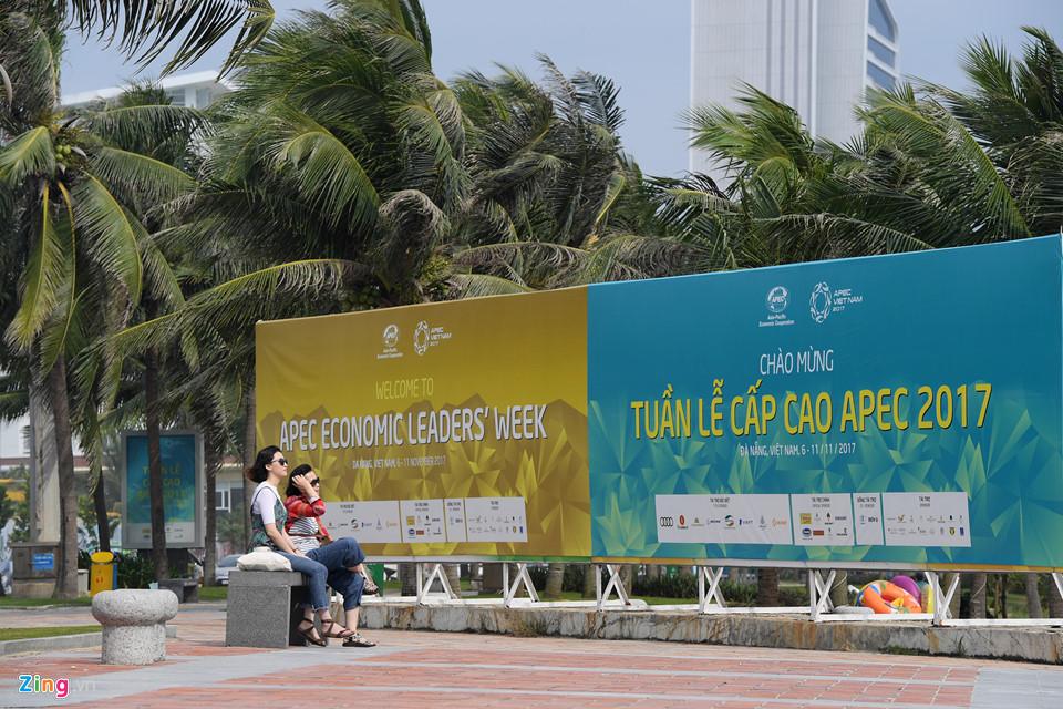 Đà Nẵng rực rỡ đèn hoa chào đón Tuần lễ cấp cao APEC 2017 - Ảnh 5