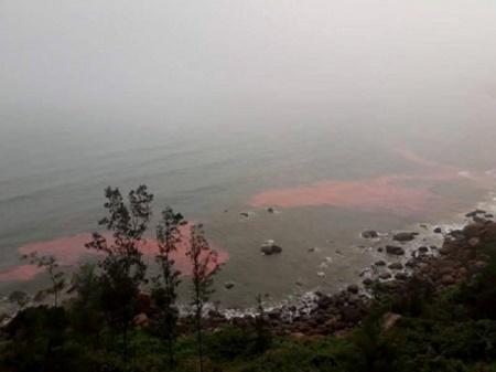 """Lấy mẫu """"dải nước màu đỏ"""" ở ven biển Lăng Cô để xét nghiệm - Ảnh 1"""