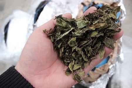 Tạm giữ lô hàng nghi lá Khát dùng sản xuất ma túy đá  - Ảnh 1