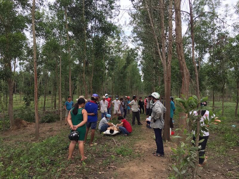 Phát hiện nam thanh niên chết trong tư thế treo cổ ở rừng tràm - Ảnh 1