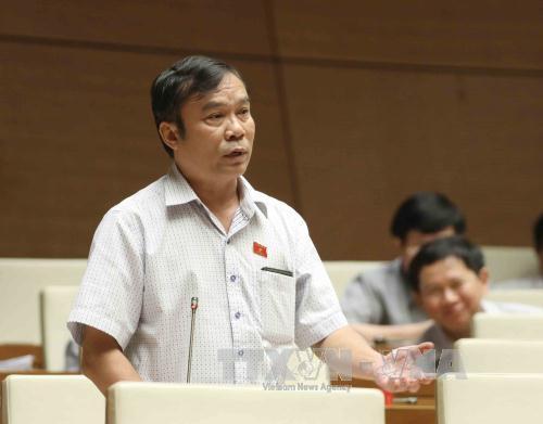 Các đại biểu hài lòng với những cải tiến tại Kỳ họp Quốc hội - Ảnh 3