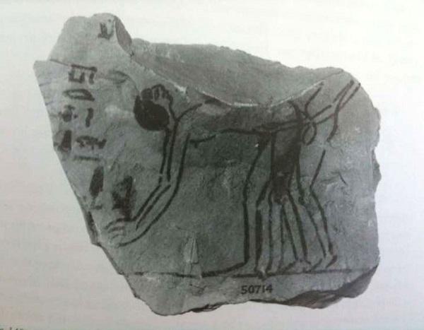 Đồng tính luyến ái thời Ai Cập cổ đại  - Ảnh 4