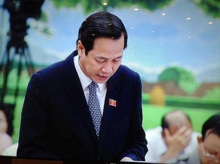 Bộ trưởng Đào Ngọc Dung đăng đàn trả lời chất vấn - Ảnh 1