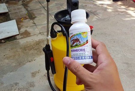 Thuốc diệt muỗi giả nhãn hiệu xuất hiện tràn lan tại Hà Nội - Ảnh 1