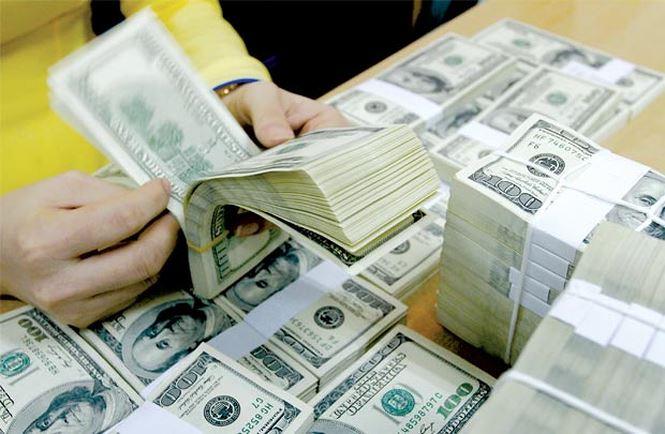 Dự trữ ngoại hối đã chạm tới mốc 53 tỷ USD  - Ảnh 1