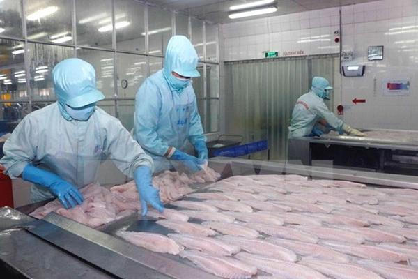 Việt Nam khiếu nại biện pháp chống bán phá giá cá tra, basa của Mỹ lên WTO - Ảnh 1