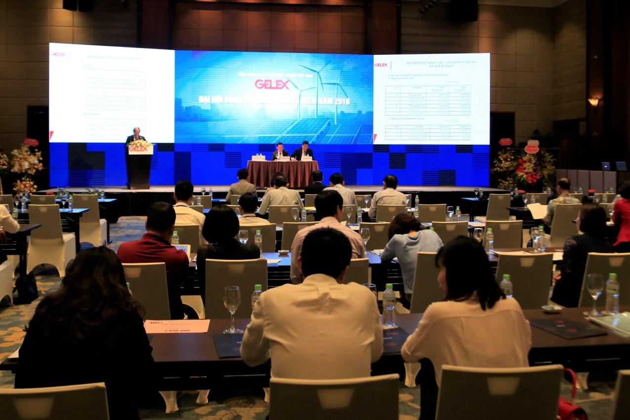 Đại hội cổ đông thường niên năm 2018 của GELEX: Khai thác dòng sản phẩm chủ đạo, tái cấu trúc sâu rộng - Ảnh 1
