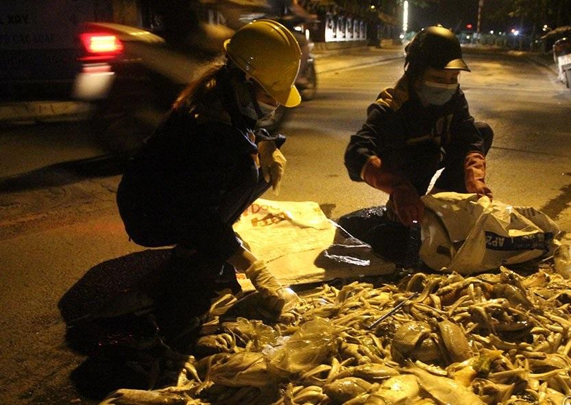Hà Nội: Hàng trăm công nhân trắng đêm vớt cá chết ở hồ Tây - Ảnh 4